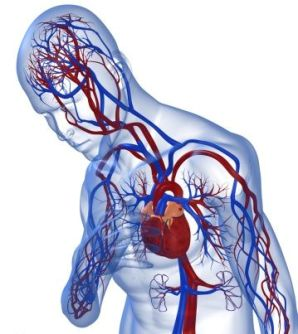 Managing Coronary Heart Disease Symptoms